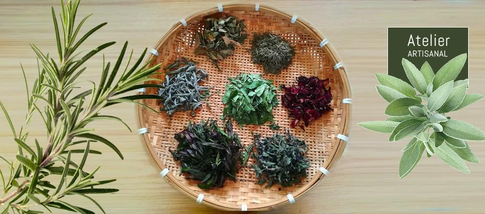 feuilles-et-fleurs-tisanes-bio103